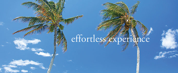 floor repair and restoration is an efortless experience with Kapalua Floors
